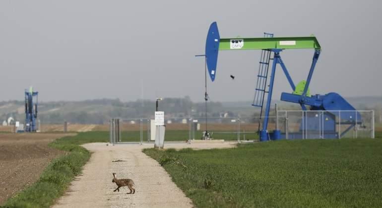 martillo-liebre-petroleo-reuters.jpg