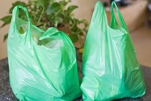 Prohibición de las bolsas en 2020