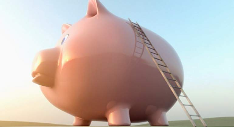 cerdito-escalera-pension.jpg