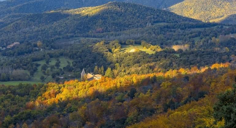 bosques-espana-montseny.jpg