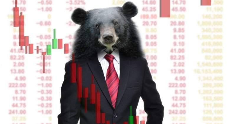 oso-ejecutivo-dreamstime.jpg