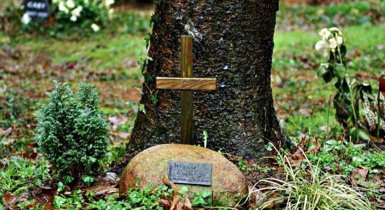 cenizas-funerarias-pixabay.jpg