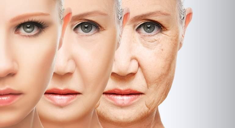 envejecimiento-etapas-dreamstime.jpg