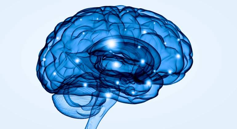 cerebro-azul-dreamstime.jpg