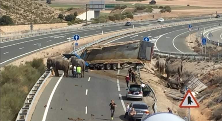 pozocanada-elefantes-accidente-ayto.jpg