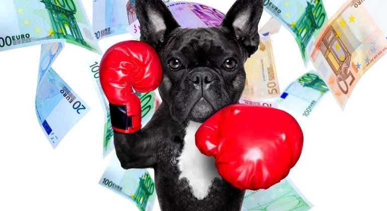 perro-billetes.jpg