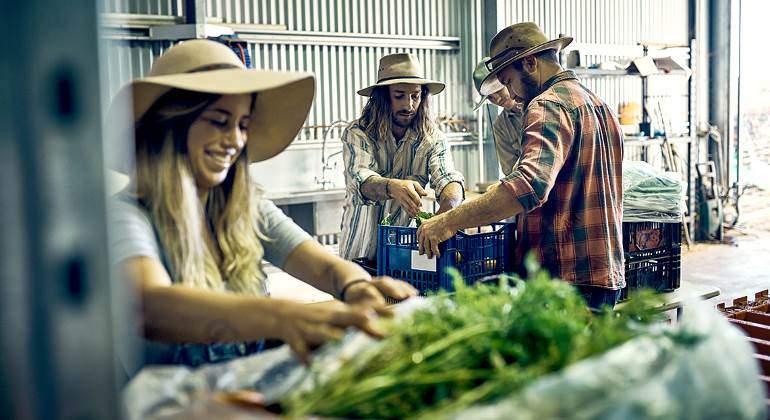 agricultores-jovenes-empaquetado-770-istock.jpg