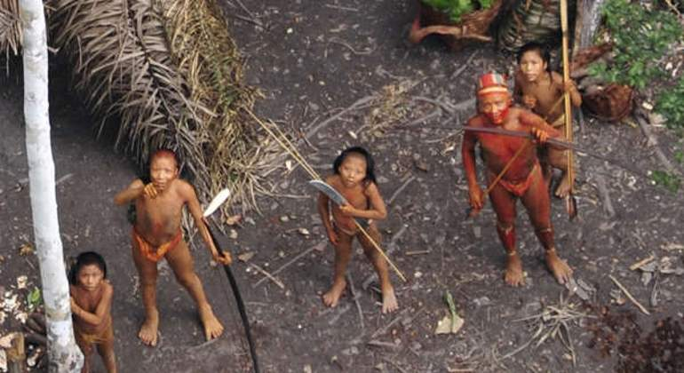 tribu-amazonas-survival-internacional.jpg
