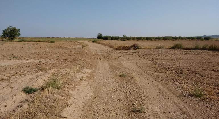 caminos-desapareciendo-770.jpg