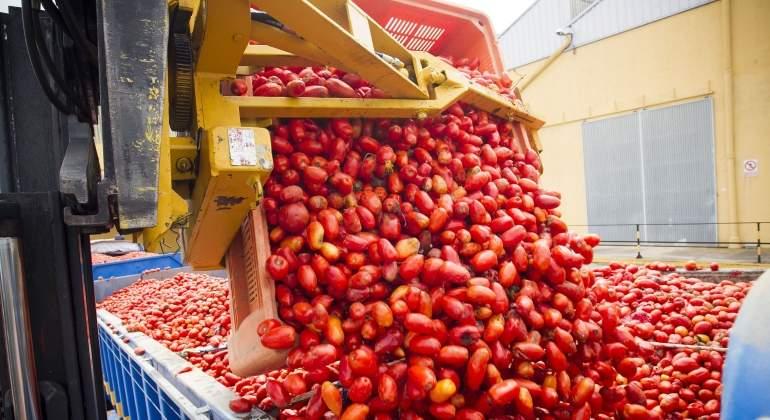 tomatina-2016-efe.jpg