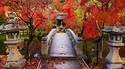 kioto-2.jpg