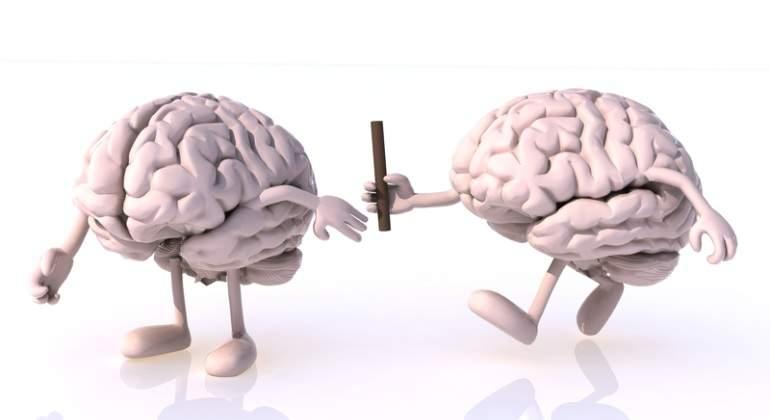 Cerebros-relevos-Dreamstime.jpg