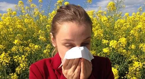 ¿Sabes cómo combatir la alergia estacional?