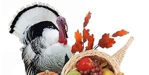 Los tres mejores platos para celebrar Acción de Gracias