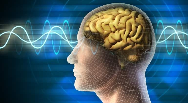 cerebro-ondas.jpg