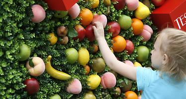 Una dieta baja en calorías podría retrasar el envejecimiento fisiológico