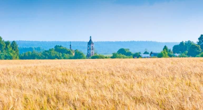 campo-ruso-trigo.jpg