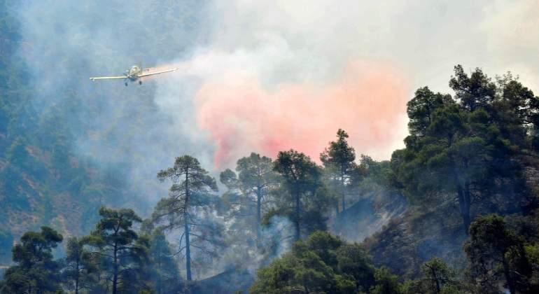 incendio-bosque-18julio2016.jpg