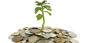 La sostenibilidad empresarial es cada vez más rentable