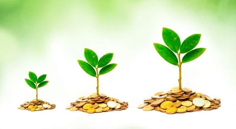 dividendos-crecen-plantas-monedas-inversion-770.jpg