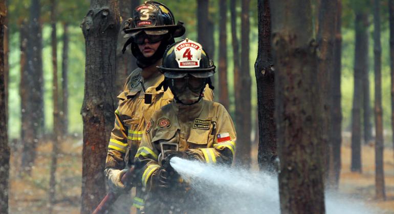 incendios-forestales-foto-efe.png