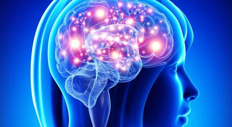 ¿Cómo decide el cerebro humano qué es importante y qué no sirve para aprender?