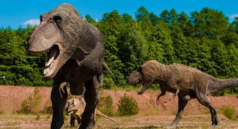 dinosaurios-carnivoros-pixabay.jpg