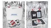 zapatillas-nasa-1.jpg