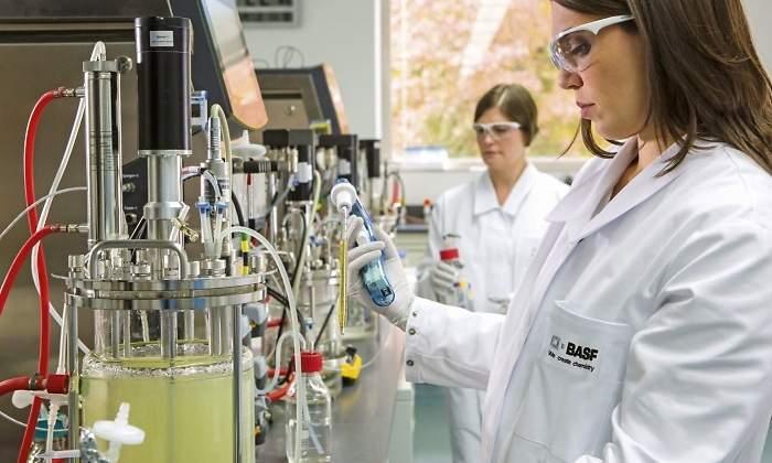 BASF finaliza el proceso de adquisición de Chemetall - elEconomista es
