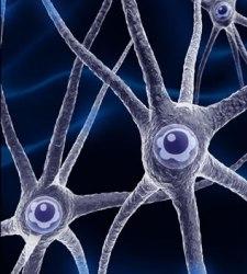 neurona.jpg